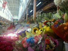 Terminal de Flores Santiago Chile