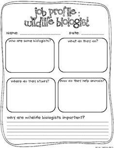 SO YOU WANT TO BE A WILDLIFE BIOLOGIST? K-2 ANIMAL RESEARCH PROJECT - TeachersPayTeachers.com