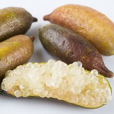 Finger Limes citrus season :: Search by flavors, find similar varieties and discover new uses for ingredients @ preppings.com