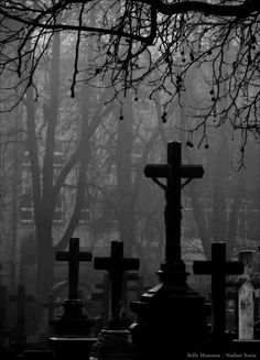 the remembrance is a cemetery, where more crosses stand as flowers. Spooky Places, Haunted Places, Dark Gothic, Gothic Art, Gothic Horror, Old Cemeteries, Graveyards, Gothic Aesthetic, Cemetery Art