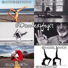 New Instagram Challenge from Dharma Yoga Center - winner gets a Dharma Yoga Wheel! Check out @dharmayogacenter on Instagram for full details >> We are happy to announce the #DevotedYogis Challenge held in loving devotion to Sri Dharma Mittra. The challenge will run from December 1st-7th. http://www.instagram.com/dharmayogacenter