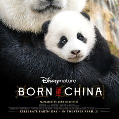 Born in China Watch Full HD Online Movies Stream. Watch Born in China Full HD Online Movie. Full Born in China Online Watch Movies HD. Online Born in Hd Movies, Movies To Watch, Movies Online, Movies And Tv Shows, 2017 Movies, Movies Free, Pixar Movies, Adventure Film, Life Is An Adventure