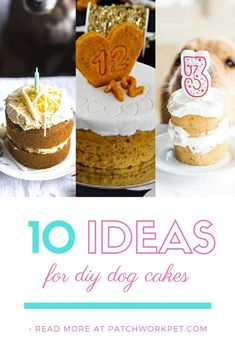 Easy to recreate and all dogs seem to love them ; Dog Cake Recipes, Dog Treat Recipes, Dog Food Recipes, Party Recipes, Dessert Recipes, Desserts, Diy Dog Treats, Homemade Dog Treats, Homemade Cakes