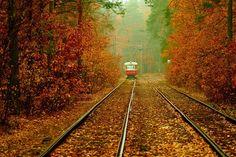 Autumn in Kyiv, the capital of Ukraine