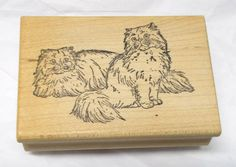 Rubber Dub Dub Rag Doll cats rubber stamp fluffy kittens Himalayan Domestic pets #RubberDubDub #CatsHimalayan