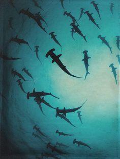 54cd11533b infinityc0re  cocaine-coated  ✰ ∞ Shark Silhouette