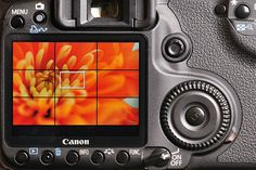 Best camera settings for macro photography