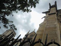 Notre Dame a Parigi ph Gsb