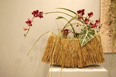 """""""Images of Orchids Large and Small"""" by Gregor Lersch @ Singapore Garden Festival 2006"""