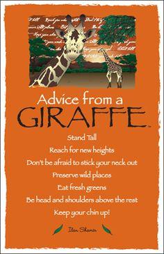 Spirit Totem Animals:  #Advice from a #Giraffe.