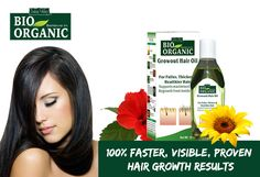 How about that ideal hair oil that not only combats hair fall but stimulates hair growth at the same time? Furthermore, this beneficial Hair Oil For Hair Growth treats dull and damaged hair in an… Growing Out Hair, Grow Hair, Natural Oils, Natural Health, Best Hair Oil, Clove Oil, Hair Growth Oil, Fall Hair, Healthy Hair
