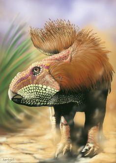 Leptoceratops | Google Search