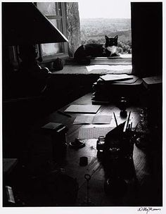The writer's cat, 1954.  by Willy Ronis