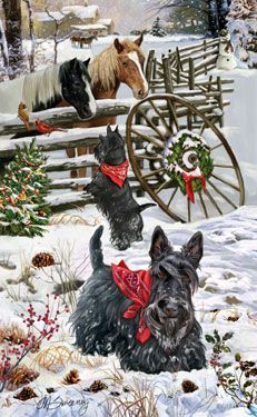 Have a blessed merry Scottie Christmas! on Pinterest