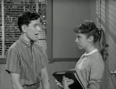 Leave It to Beaver Leave It To Beaver, Episode Guide, Family Show, Stay Gold, Old Tv Shows, Working With Children, Leaves, Seasons, Seasons Of The Year