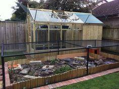outdoor tortoise enclosure | diesel's mum , Bullfinch and Bloorbabe like this.