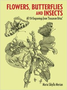 """Flowers, Butterflies and Insects: All 154 Engravings from """"Erucarum Ortus"""" (Dover Pictorial Archive): Maria Sibylla Merian: 9780486266367: Amazon.com: Books"""