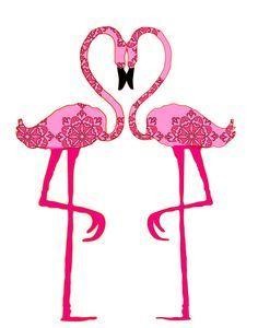 Flamingos on Pinterest