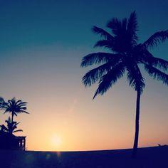 bahamas #sunset #thecoveatlantis