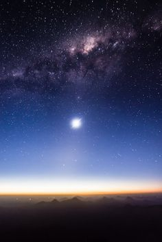 stars shine for you ♥