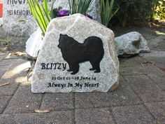 Blitzy the Samoyed remembered