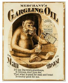 Merchant's Gargling Oil for Man and Beast, Clay, Cosack & Co., c ...