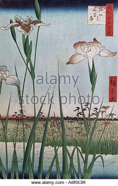 Tokyo Landscape Flowers Ukiyo E Hiroshige Ando Japan Asian Art ...