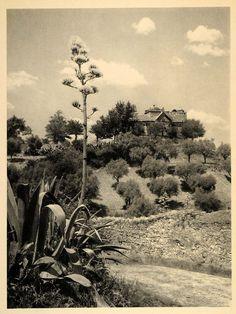 Great site for old photos! — 1942 Nossa Senhora da Conceicao Tomar Portugal Church