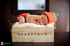 Baby M will be born in October... a newborn fall themed shot would be perfect!