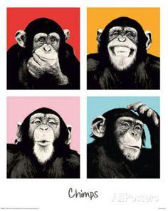 The Chimp Pop Art Print Poster Posters - AllPosters.co.uk