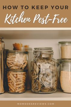 How to Keep Your Kitchen Pest-Free - Mom Does Reviews Cinnamon Oil, Cinnamon Sticks, Buy Mason Jars, Trash Disposal, Sweep The Floor, Tidy Kitchen, Free Mom, Food Items, Homemaking