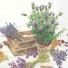 Welcome to Purple Haze Lavender « Purple Haze Lavender