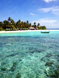 Honeymoon Destination - Maldives  Check ✔