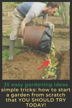 Crucial Tips for Starting a Vegetable Garden gardening ideas for beginners home gardening ideas gardening hacks top 10 gardening tips home gardening tips india pro gardening tips handy gardening tips Gardening For Beginners, Gardening Tips, Starting A Vegetable Garden, Vegetable Gardening, Easy Garden, Spring Garden, Growing Plants, Dream Garden, Amazing Gardens