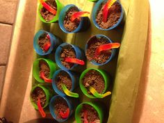Dirt cups w/ a worm. Chocolate pudding, topped with crushed chocolate graham crackers. Life cycle science unit (preschool & kindergarten) snack. You could use flowers instead or plastic bugs.
