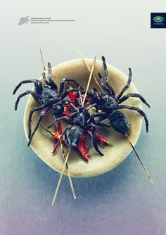 Land Rover ads featuring nasty exotic foods - Toasted Goliath Tarantula - A favorite snack for children in the Orinoco River Basin. Creative Advertising, Product Advertising, Print Advertising, Advertising Campaign, Land Rover, Weird Food, Scary Food, Communication Art, Gourmet