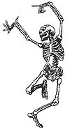 gangesyoga | Yoga for a Happy Skeleton