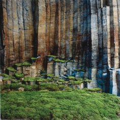 Nils Udo (basalt columns and moss)