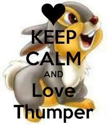 KEEP CALM AND Love Bunny and Thumper. Another original poster design created with the Keep Calm-o-matic. Buy this design or create your own original Keep Calm design now. Keep Calm And Love, My Love, Monsters Inc University, Bambi And Thumper, Oh Beautiful, Keep Calm Quotes, Disney And More, Disney Addict, Disney Tattoos