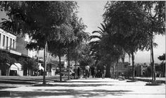 Goulielmos Nikos ΧΑΝΙΑ ΠΛΑΤΕΙΑ 1866 ΔΕΚΑΕΤΙΑ ΤΟΥ 50 —