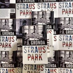 Straus Park the new novel by P.B. Gronda