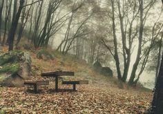 """Mención de Honor: """"Merendero"""", de D. Simón Planes Vitores. Paisajes de otoño en el Valle del Jerte http://soprodevaje.blogspot.com.es/ OTOÑADA en el Valle del Jerte"""