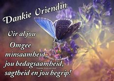 Good Morning Greetings, Afrikaans, Christianity, Friendship, Bible, Biblia, Afrikaans Language, Christians, The Bible