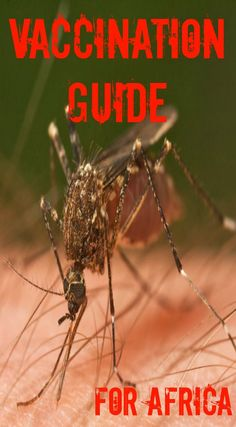 Ultimate Vaccination Guide for Africa Travel. This ultimate vaccination guide for Africa. Whether you are just going for a 2 week safari, volunteer work or a 4 month overland expedition, we are going to go through all the must-haves and some of the other things you should be aware of during your travels. See the full travel guide at http://www.divergenttravelers.com/ultimate-vaccination-guide-for-africa-travel/