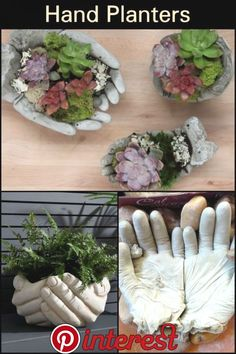 DIY Hand Planters Does your garden need one of these helping hypertufa hands? DIY Hand Planters Does your garden need one of these helping hypertufa hands?