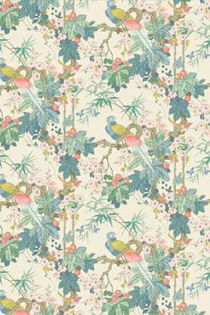 Perching birds sit amongst tall bamboo and beautiful blossoms; against a simple and chic plan background Tropical Wallpaper, Luxury Wallpaper, Wallpaper Decor, Animal Wallpaper, Designer Wallpaper, Linwood Fabrics, Latest Wallpapers, Bird Perch, Tropical Houses
