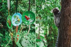 Colagem com elementos naturais: flores, plantas e sementes | Kids Craft: Flower…