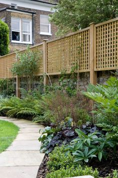 privacy trellis privacy trellis for deck trellis screen with planter trellis ideas for privacy garden trellis ideas for privacy Privacy Fence Landscaping, Privacy Fence Designs, Outdoor Privacy, Backyard Fences, Backyard Landscaping, Garden Fences, Garden Borders, Wood Fences, Privacy Fence Decorations