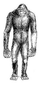 Vasitri- South American cryptid: wild men who live in the Venezuelan jungles. They are ill-tempered, carnivorous, and capable of building guts and crude weapons. They eat men and kidnap women for breeding purposes.