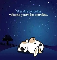 Feliz noche. translation: If you fall down in life, turn around and look at the stars. (thanks Jane Murray)